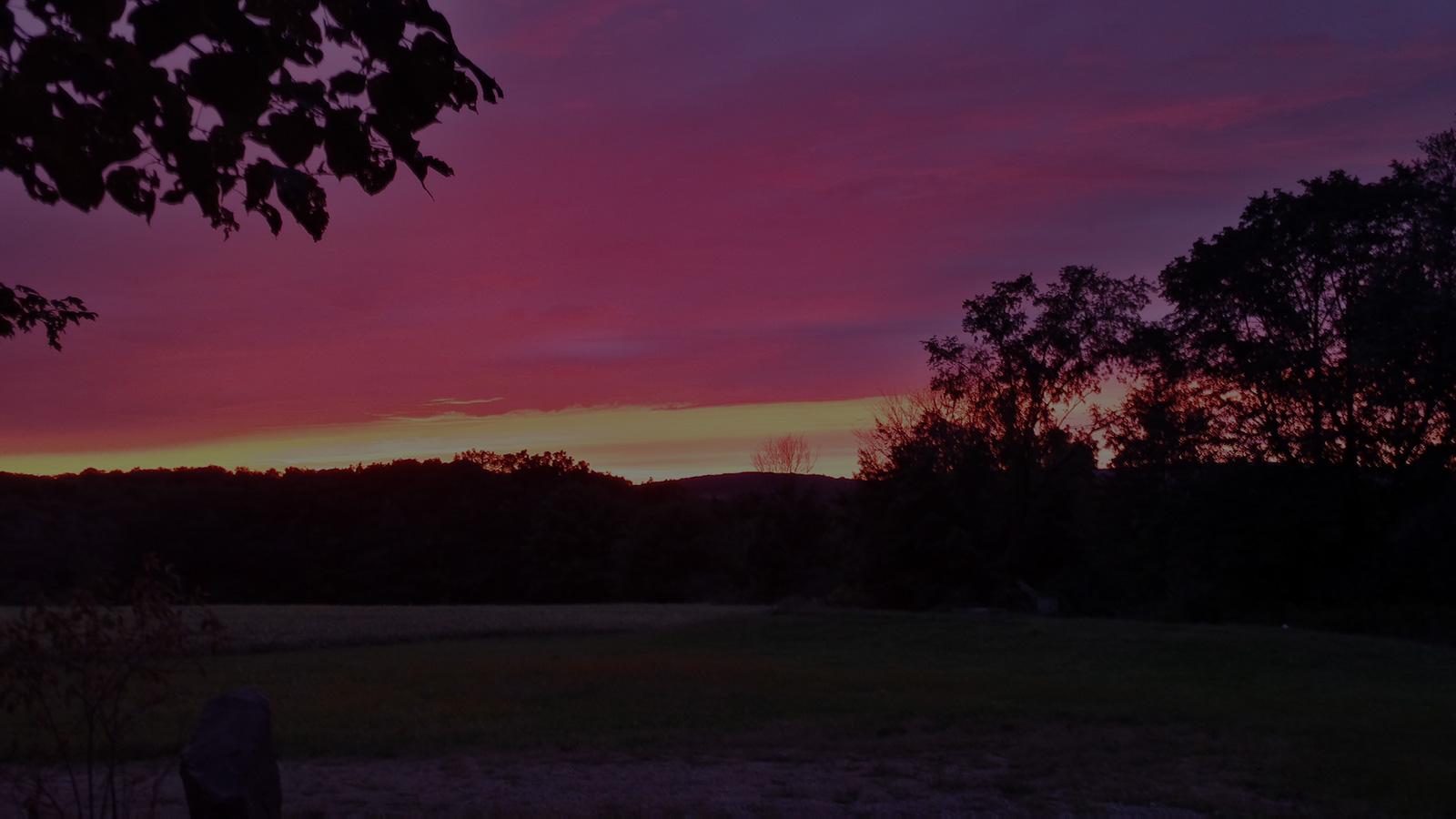 Beautiful Sunset - Waddell Wildlife Creations