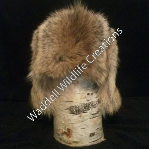 Coyote Hat